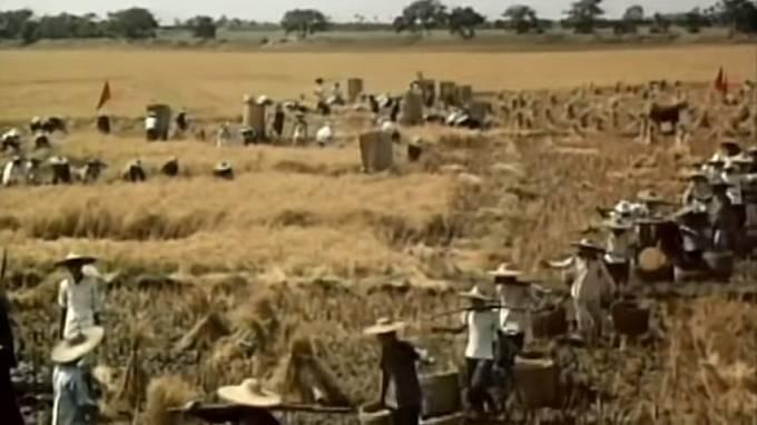 Kolektivizace zemědělství byla hlavním bodem Velkého kroku vpřed.