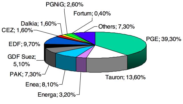 Podíl společností na výrobě elektřiny vPolsku vroce 2013.Engie zde figuruje ještě pod starším názvem GDF Suez.