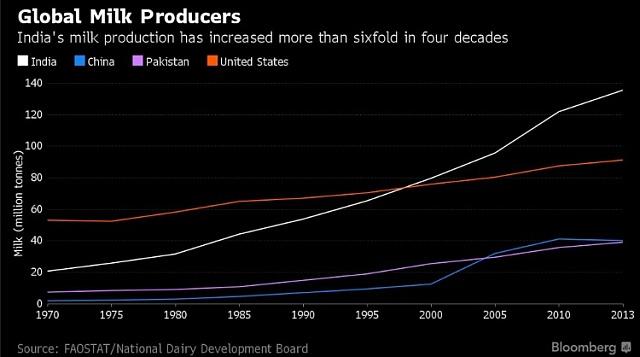 Produkce mléka vIndii prudce roste.