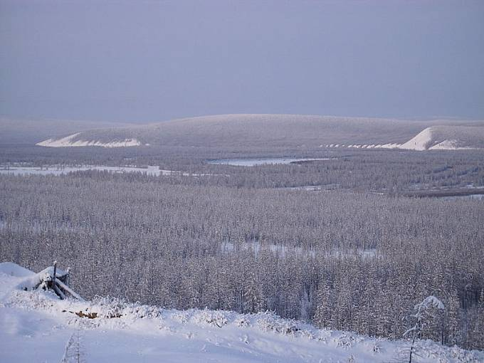 Sibiřská tajga