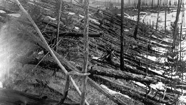 Zdevastovaná krajina sibiřské tajgy po pádu tunguzského meteoritu