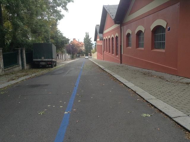 Modrá zóna za střešovickým Muzeem městské hromadné dopravy může být příkladem nelogických změn. Ulice, která vždy bývala osiřelá, je teď vyhrazena rezidentům. Zůstává prázdná, přičemž vněkterých okolních ulicích, kde modré zóny nejsou, je přehuštěno.