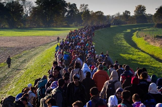 Uprchlíci směřující do Německa. Říjen 2015.