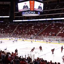 Statistiku využívá také NHL tým Arizona Coyotes