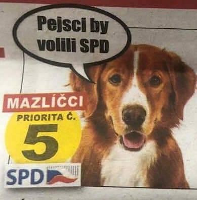 Kočky by kupovaly Whiskas. Pejsci by prý volili SPD