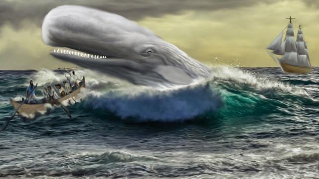 Mocha Dicka se snažilo ulovit nejméně sto lodí. Úspěšně však zničil 14člunů, jednu nákladní a dvě obchodní lodě, tři velrybářské čluny a další lehce poškodil.