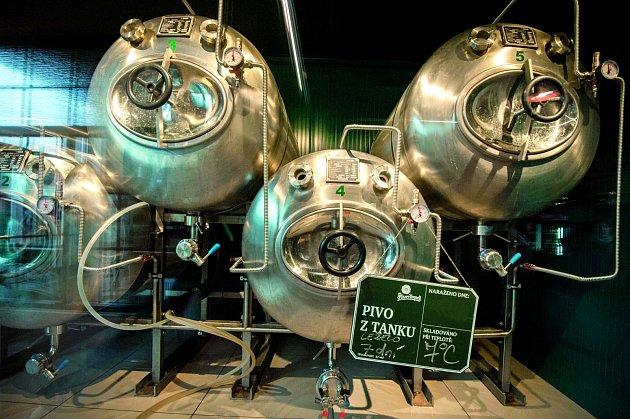 Pivo z tanku. Ilustrační foto.