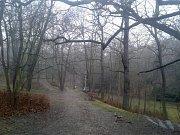 Park v Žatci. Ilustrační foto