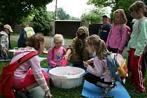Děti soutěžily a objevovaly tajemství přírody