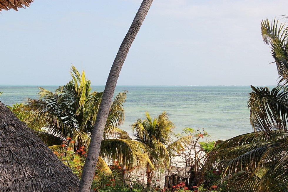 Příroda u města Jambiani v Zanzibaru