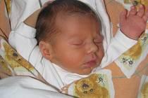 Mamince Markétě Kailové z Petrohradu se 31. července 2011 v 17:15 hodin v žatecké porodnici narodila holčička Lily Kailová. Vážila 2,23 kilogramu a měřila 43 centimetrů.