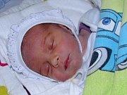 David Janeček se narodil 21. července 2017 ve 14.45 hodin v žatecké porodnici mamince Nikole Janečkové z Mostu. Vážil 2310 g a měřil 46 cm.