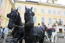 Koně pro turisty u zámku v Krásném Dvoře