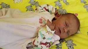Aneta Jedličková se narodila 9. února 2019 ve 22.54 hodin rodičům Lence Eichlerové a Marku Jedličkovi ze Skytal. Vážila 3140 g a měřila 50 cm.