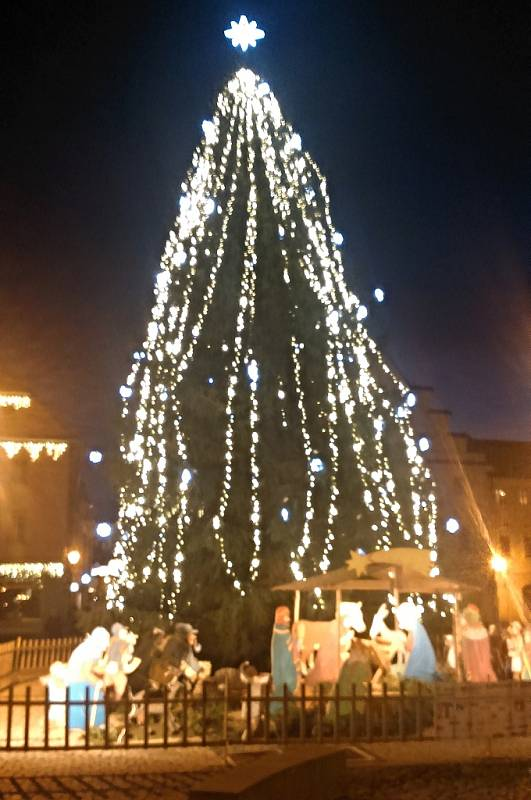 Původní vánoční strom na žateckém náměstí Svobody v sobotu 10. prosince večer ještě krásně zářil. Za pár hodin ho vítr zlomil
