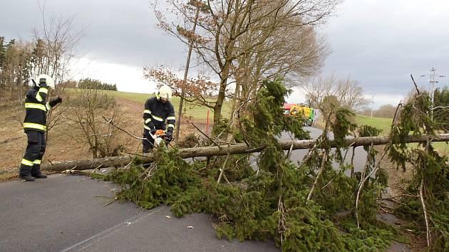 Hasiči odstraňovali padlé stromy u Deštnice a Třeskonic.