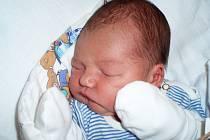 Petře a Vladislavu Lauterbachovým z Loun se 26. září 2012 narodil syn Tobiáš Lauterbach. Váha 3,66 kg, míra 52 cm.