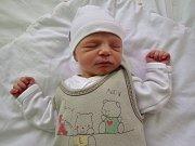 Stella Streicherová se narodila v kadaňské porodnici 20. února 2017 ve 3.38 hodin rodičům Gabriele a Marku Streicherovým zPanenského Týnce. Měřila 47 cm a vážila 2,35 kg.