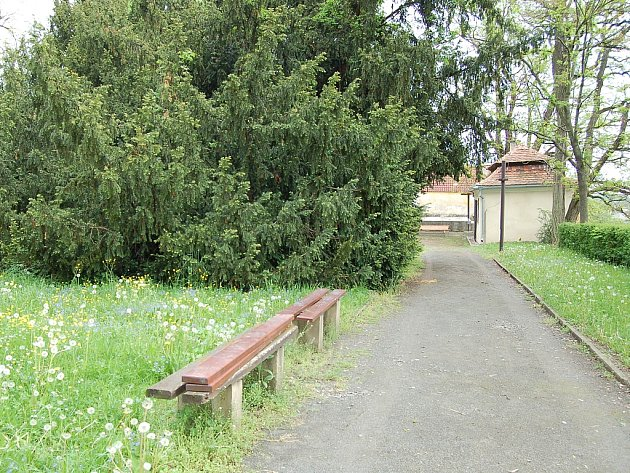 Lavičky v Postoloprtském zámeckém parku