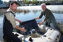 Martin Zima (vlevo) a Miroslav Brynda nakládají pod libočanským jezem do člunu pstruhy duhové, které následně rozvezli ve středu odpoledne po řece Ohři.