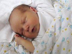 Mamince Veronice Dormiševové z Holedeče se 17. května 2012 ve 13.36 h narodil syn Martin Dormišev. Vážil 3 kg a měřil 50 cm.
