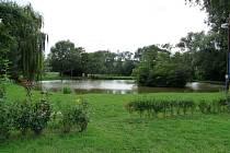 Snímek č. 3  Rybník v Blšanech u Loun