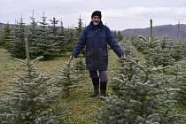 Luděk Černý mezi svými stromky na okraji Malé Černoci.