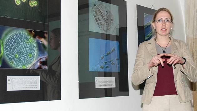 Anna Bucharová hovoří o expozici.