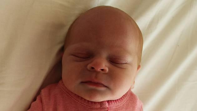 Elizabeth Pavlová se narodila mamince Lucii Pavlové a Karlovi Trefancovi z Kryr 24.9.2019 v 17:48 hodin.  Měřila 47 cm a vážila 2,72 kg.