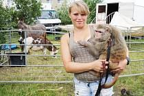 Karolína Berousková ukazuje opičku, která je součástí zvěřince Cirkusu Berosini.
