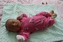 Anna Sojková se narodila mamince Drahoslavě Mohauptové ze Žatce 11.srpna ve 21.47 hodin. Vážila 3,76kilogramu, měřila 50 centimetrů.