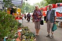 Anna a Vilém Vojtěchovi si prohlížejí nabídku kaktusů  na výstavišti v Lounech.