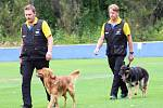 Mistrovství světa družstev záchranářských psů v Žatci