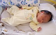 Martina Lacková se narodila 18. července 2017 ve 23.48 hodin rodičům Ivetě Lackové a Martinu Ferkovi ze Žatce. Vážila 2840 g a měřila 47 cm.