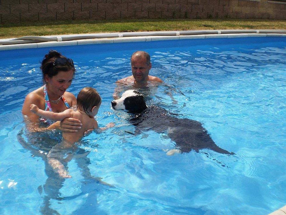 Rodinná koupel v bazénu.   Patrik Chromý, Jirkov