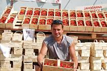 Jiří Šupík prodává jahody nedaleko Bítozevsi poblíž hlavní silnice z Loun na Chomutov.