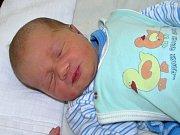 Dominik Ledvina se narodil mamince Iloně Podolákové z Lubence 14. března 2017 ve 14.09 hodin. Vážil 3,45 kg, měřil 50 cm.