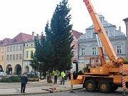 Stavění vánočního stromu na náměstí Svobody v Žatci