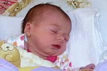 Lucie Andršová se narodila mamince Iloně Krškové ze Žatce  15. února 2017 v 10.21 hodin. Vážila 2,5 kg, měřila 45 cm.