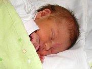 Hana Dluhošová se narodila 5. října 2017 v 11.44 hodin mamince Anastázii Dluhošové ze Žatce. Vážila 2760 g a měřila 46 cm.