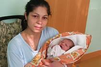 Mamince Simoně Milenkové ze Žatce se narodila dcera Markéta Milenková. Vážila 2,68 kilogramu  a měřila 47 centimetrů.