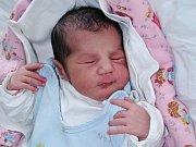 Julie Janová se narodila 19. července 2017 v 17.25 hodin mamince Sandře Janové z Loun. Vážila 3280 gramů a měřila 49 centimetrů.