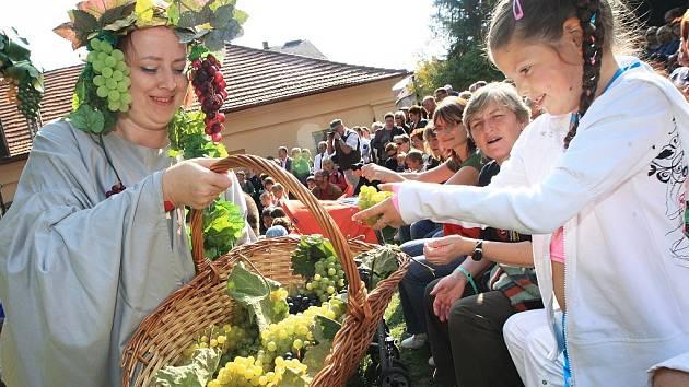 Slavnosti vinobraní v Třebívlicích