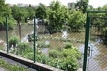 Středa 5. 6. 2013. Zaplavené zahrádky v kolonii Na Losech v Lounech