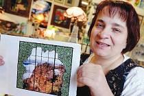 Nejprve měla vitráž pro Expo 2015 představovat Pravčickou bránu. Nakonec ale Jitka Kantová zobrazí Portu Bohemicu.