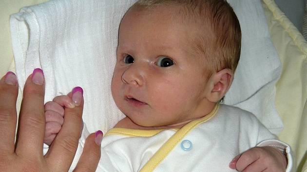 Manželům Hance a Janu Laiblovým se v kadaňské porodnici 23. června 2015 narodila dcerka  Adélka Laiblová. Vážila 3,6 kilogramu a měřila 51 centimetrů.