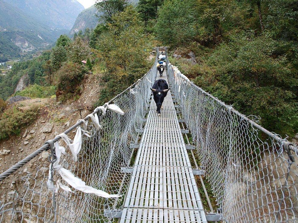 Jaci na lanovém mostku na cestě mezi Luklou a Namche Bazaarem