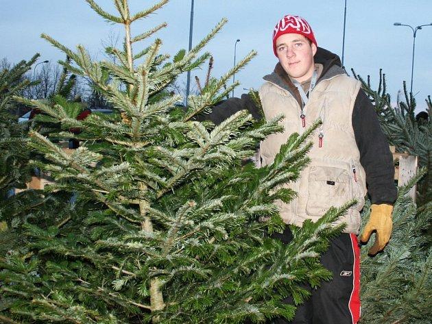 Tomáš Vyskočil nabízí vánoční stromky zájemcům v Lounech.