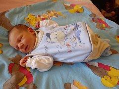 Rodičům Janě Hirnšálové a Václavu Vodvářkovi z Lubence se v kadaňské porodnici 23. února 2016  v 17.23 hodin narodil synek Karel Vodvářka. Vážil 3270 gramů a měřil rovných 50 centimetrů.