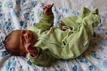 Kamil Mikovec se narodil 14. ledna 2019 ve 22.17 hodin rodičům Monice a Kamilu Mikovcovým z Loun. Vážil 2860 g a měřil 48 cm.